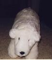 Conrad's polar bear using fur fabric, safety lock eyes and nose, stuffed with polyester stuffing.