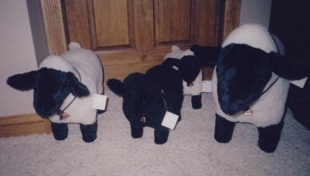 Conrad's sheep made in 3 sizes, made with fur faces, and curly fur fabric bodies, safety lock eyes.  Made with foundation so sheep are always standing, stuffed with polyester stuffing.